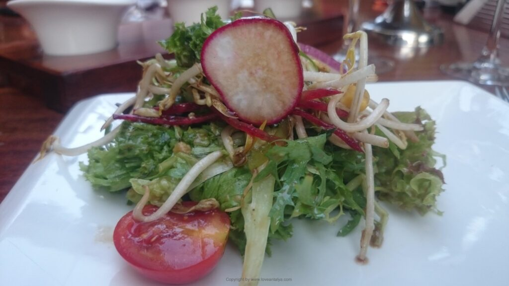 Salad My steakhouse