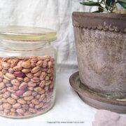 turkish baked beans