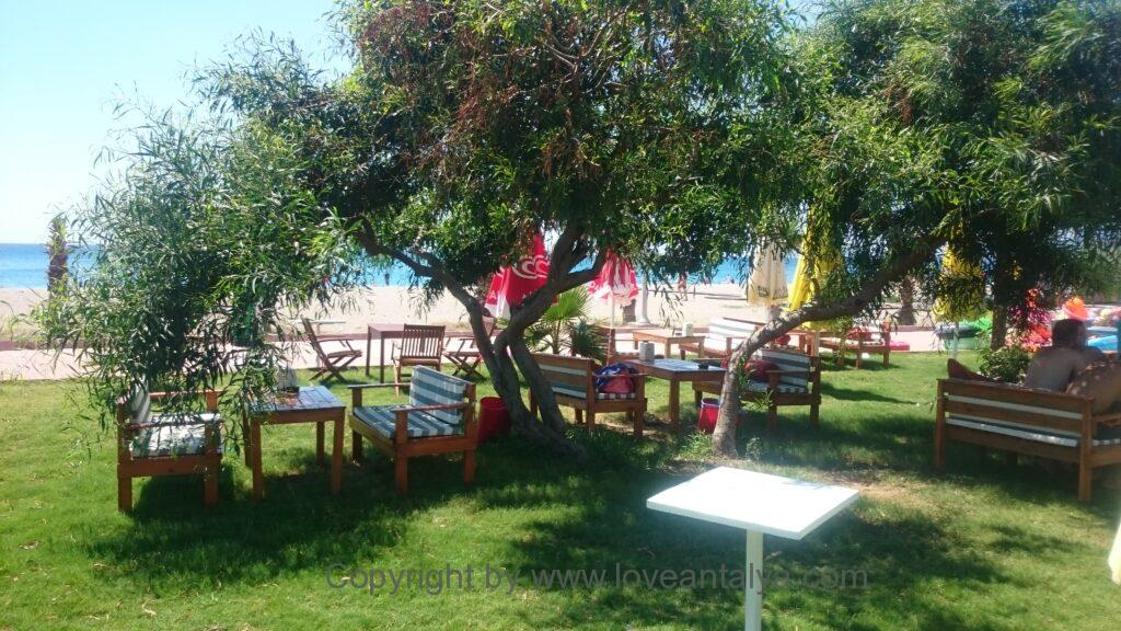 Tyrkisk picnic